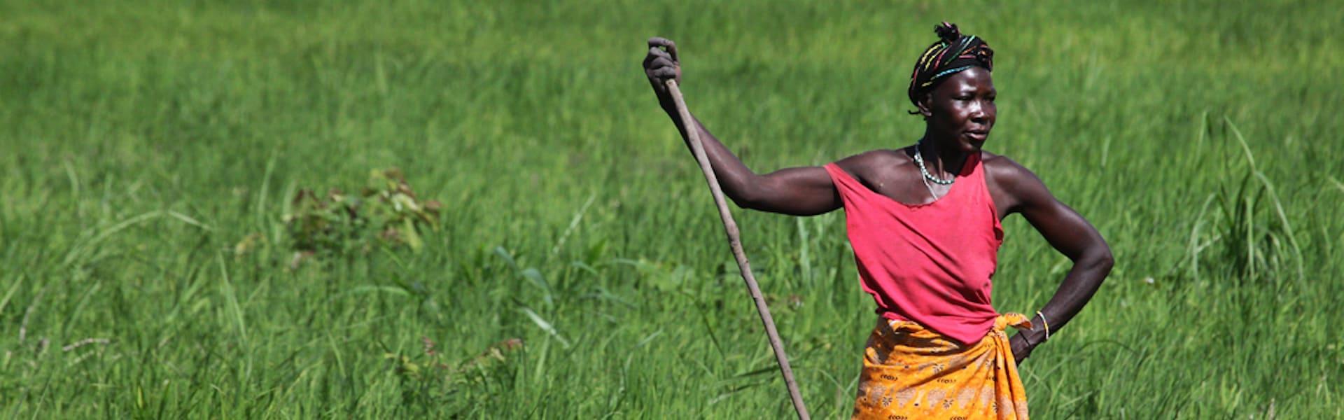 Woman, Africa, agriculture, entrepreneurship, NextBillion.net