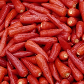 Field of View: How a Chilli Cash Crop Helps Subsistence Farmers Shape Their Future