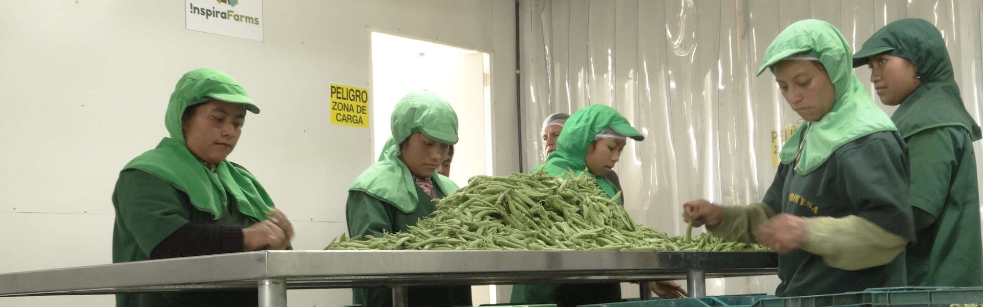 Rethinking Food Security By Re-inventing the Cold Storage Chain