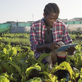 Africa as a Hotbed for Innovation: Technology Providing New Ways to Look at Age-Old Problems