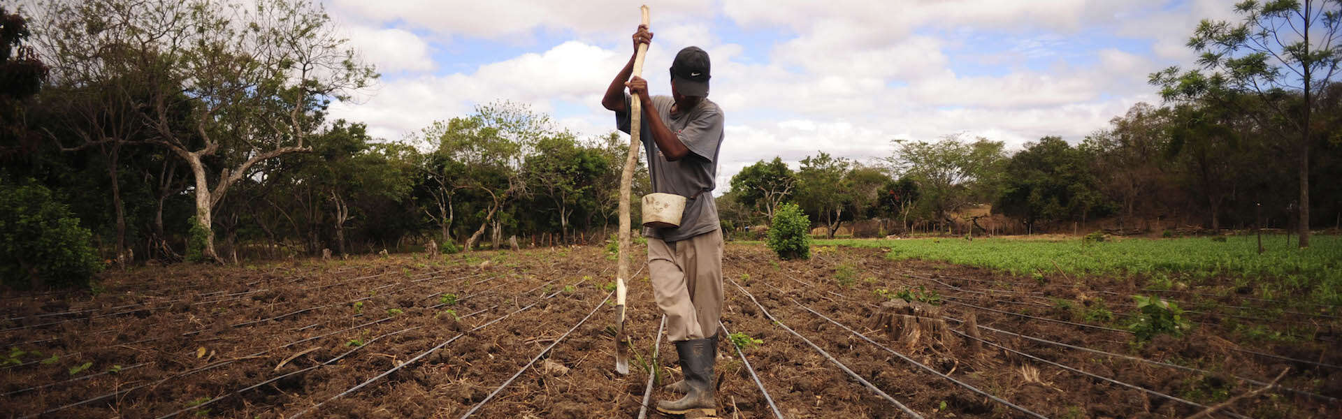 A New Era of Farming: Unlocking Innovations for Smallholders Via Non-Traditional Finance, on NextBillion.net