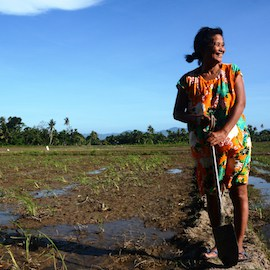 Letter from Mindanao, Part 2: Rural banking and the promise of cacao, on NextBillion.net
