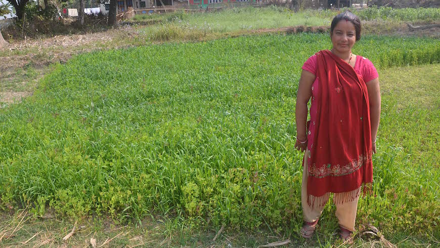 Sarita, a farmer who runs a small village homestay in the Chitwan district of Nepal