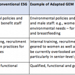 Empowerment Mainstreamed: Applying Gender Equity Across the ESG Standard