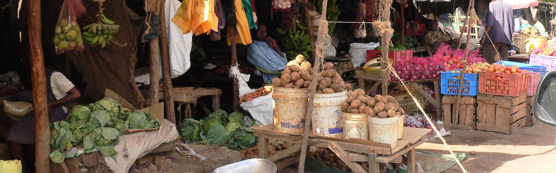 'The Dumbest Waste of Time Ever': How the Development Sector is Failing MSMEs