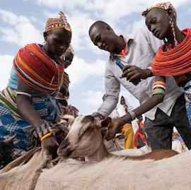 Merille Market, northern Kenya. Photo: David duChemin