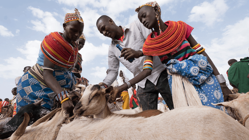 Merille Market in Northern Kenya. Photo: David duChemin
