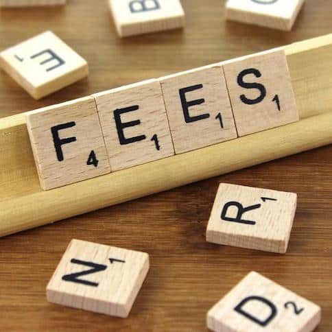 Are 'Convenience Fees' Halting the Adoption of Digital Finance