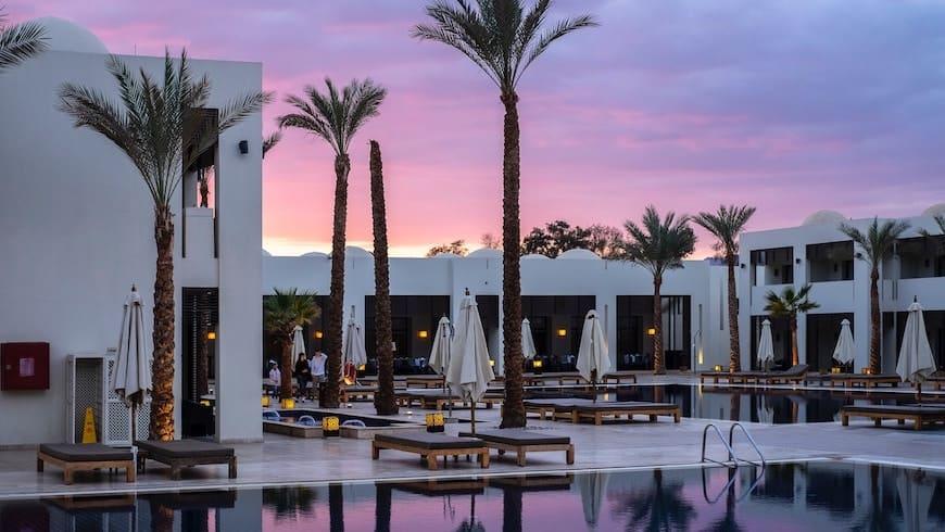 hotel palm tree tourism luxury